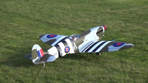 seagull spitfire